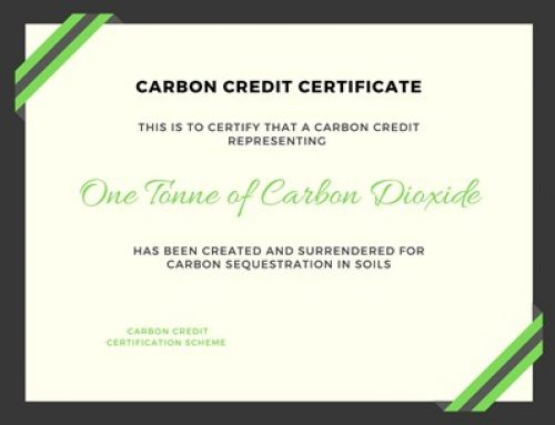 How to get carbon credits? A methodology overview for soil carbon sequestration
