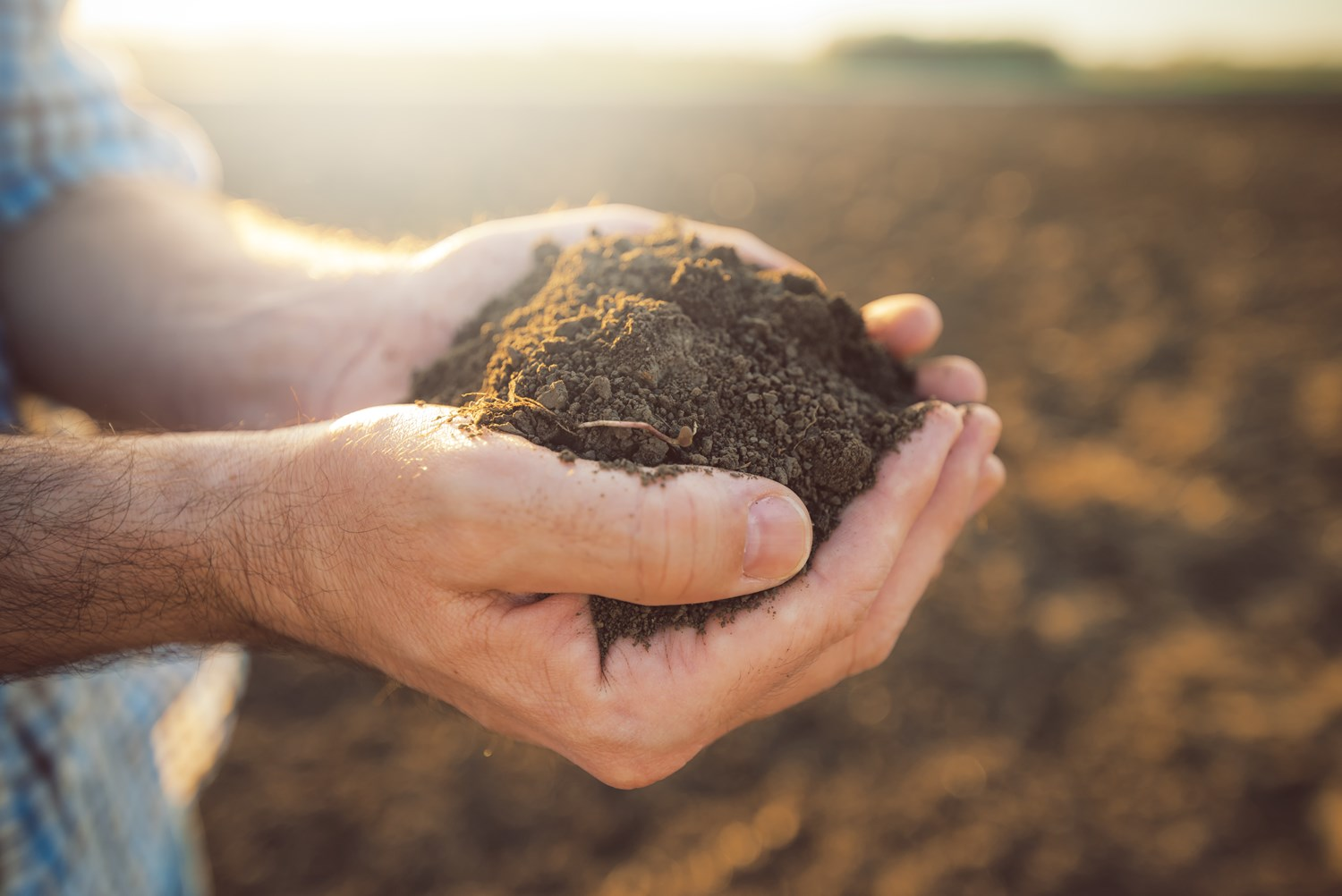 Sustainable agriculture, soil fertility and transparency in our food chain