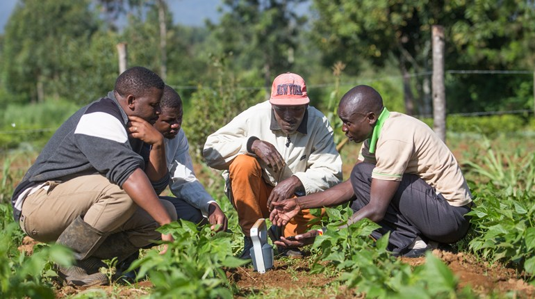 AgroCares partners with GIZ to improve soil fertility in Kenya