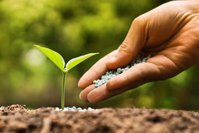 Expert blogs: Why adoption level is underestimated in fertiliser recommendations