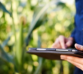What is the difference between precision, digital and smart farming?