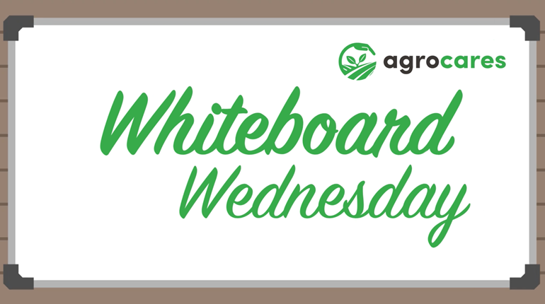 AgroCares Presents: Whiteboard Wednesday